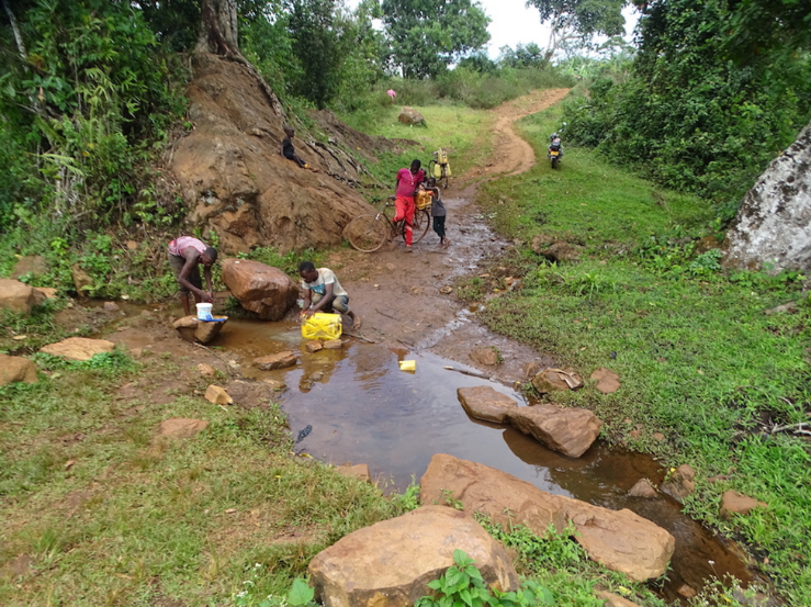 View of a forest path with a waterhole in the foreground. Children with canisters kneel on the ground and scoop water.