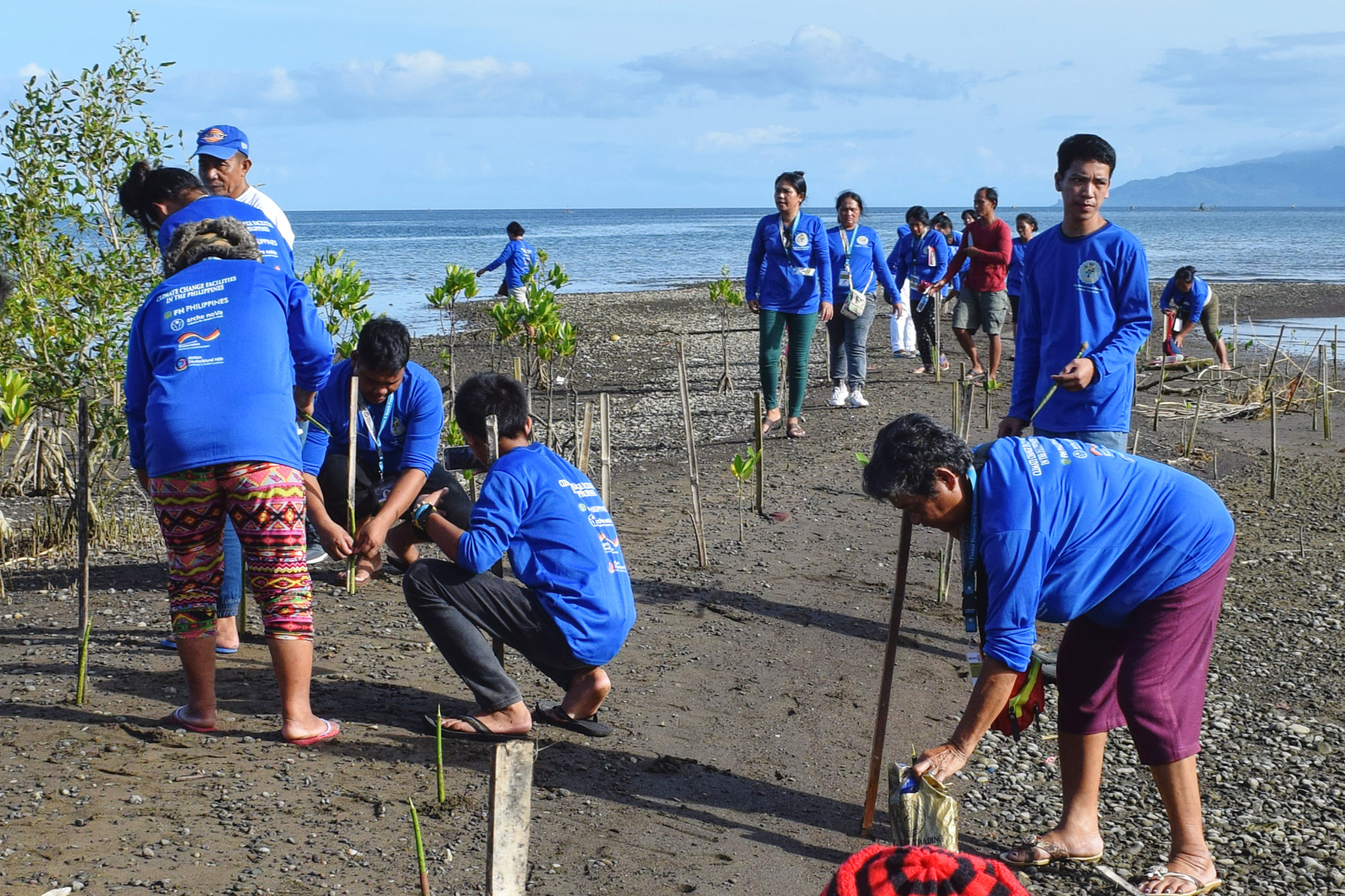 People at the coast planting seedlings