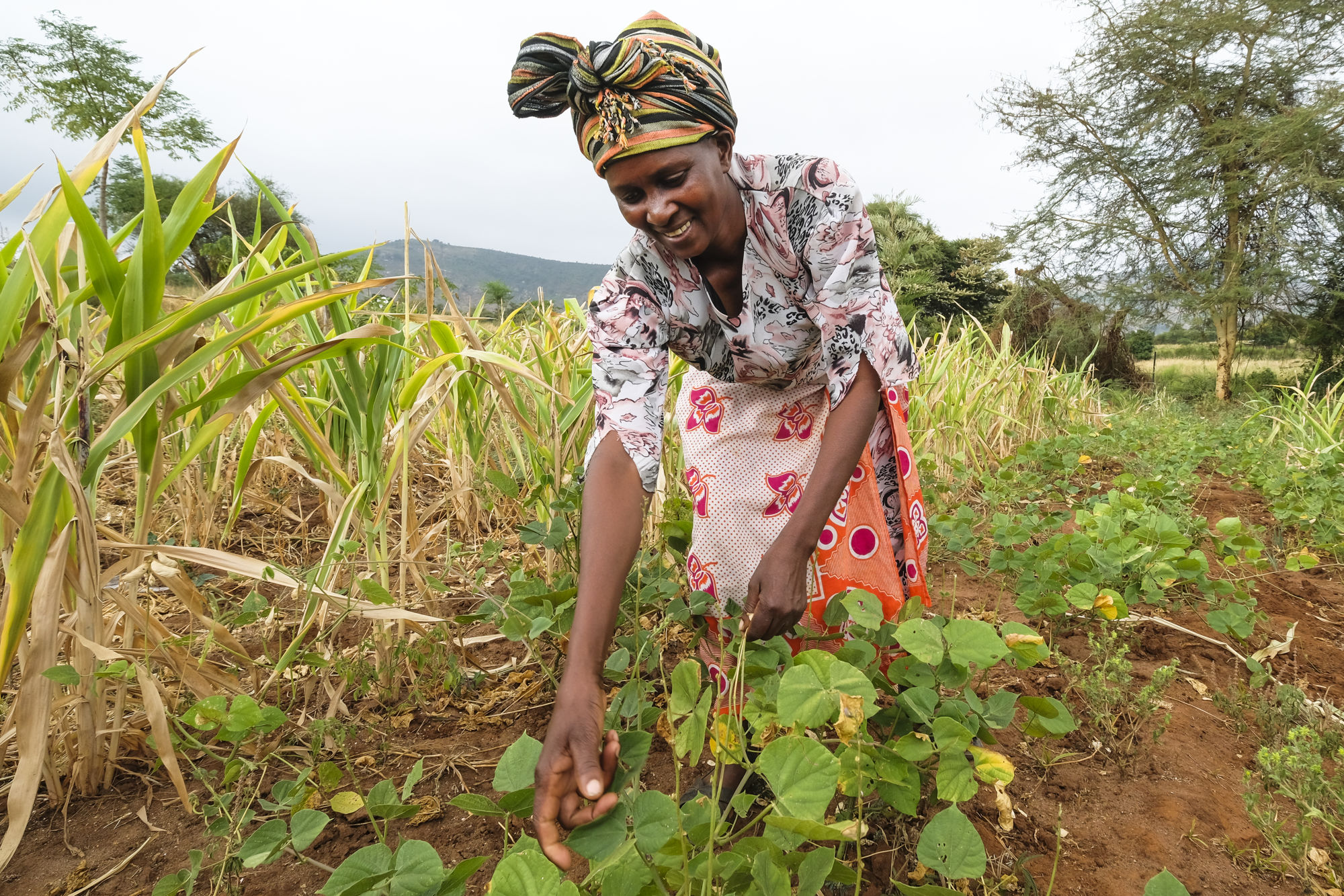 Josephine Nyenze shows her crops