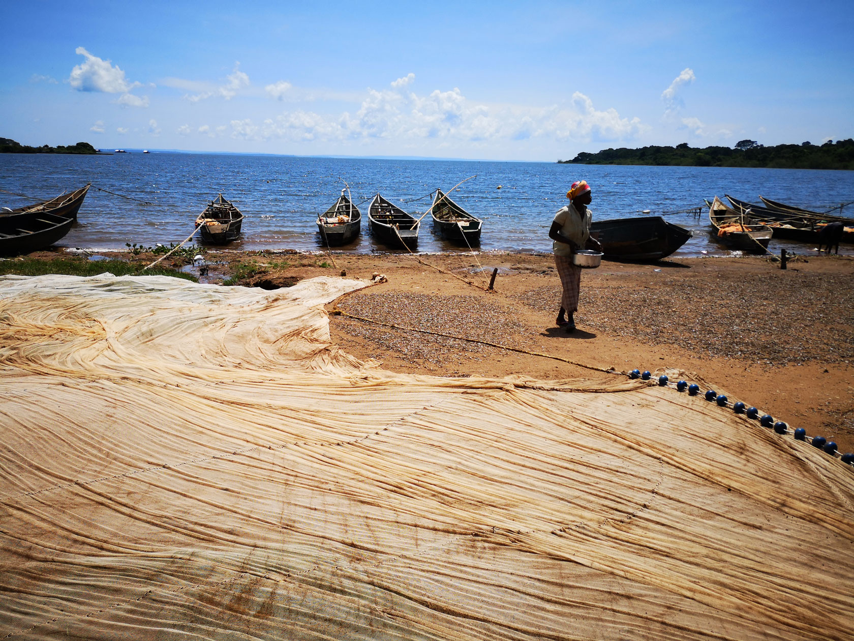 Fishing nets on the shore of Lake Victoria in Africa.